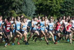 The men's cross country team starts its event at the Connecticut College Cross Country Invitational at Harkness Memorial State Park on Saturday, Oct. 15. (Evan Sayles / The Tufts Daily)